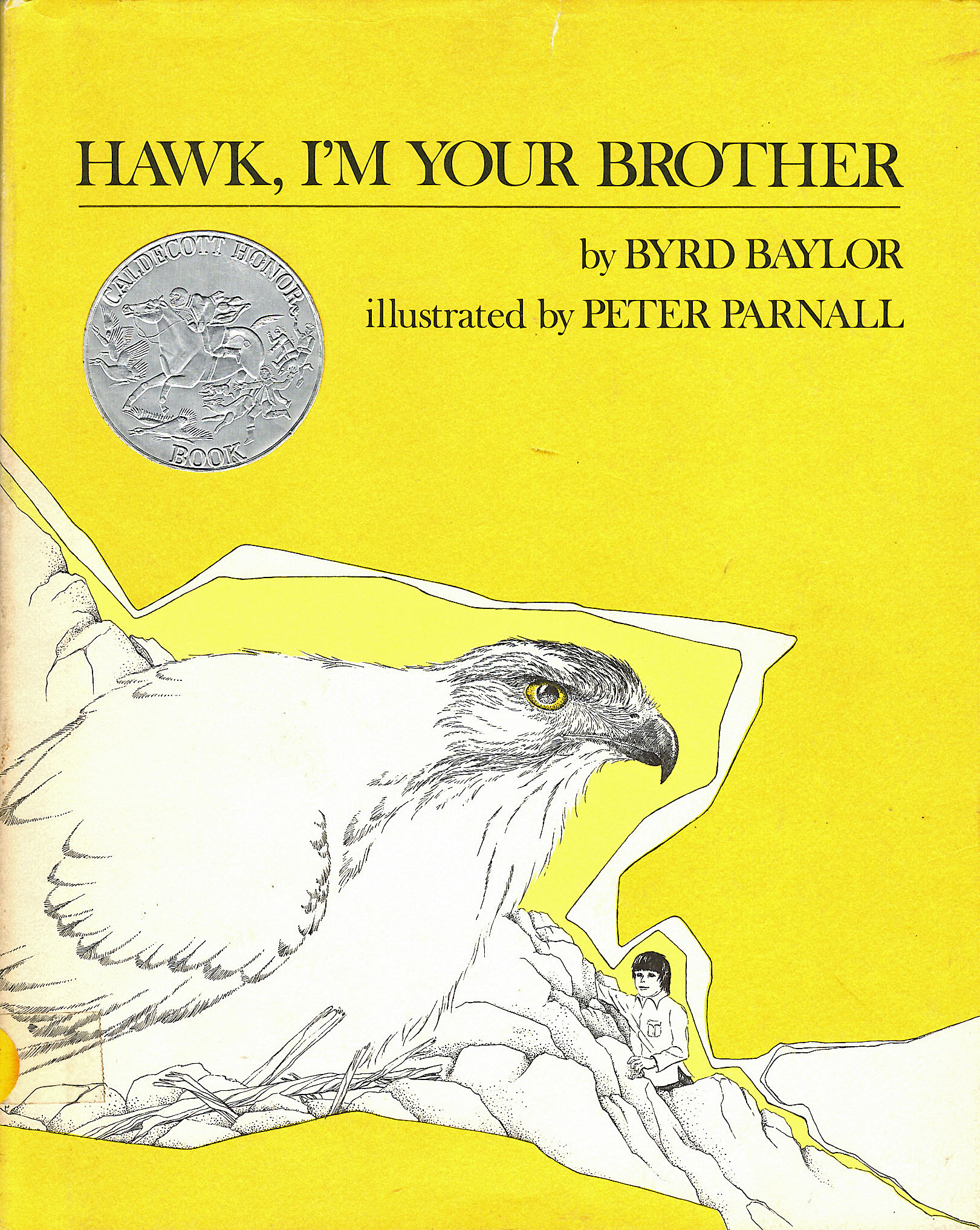 Hawk Brother Book